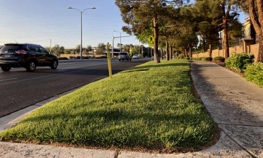 A grassy landscape on Green Valley Parkway in suburban Las Vegas. A new law will outlaw 40% of the grass in the area.