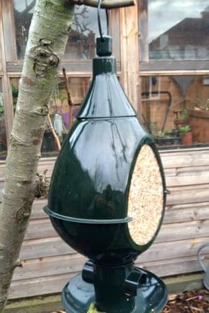 Peckish lantern seed feeder