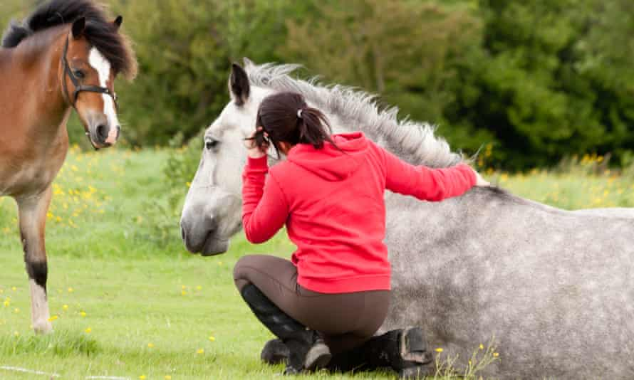 Horses are special – and women and girls love riding.
