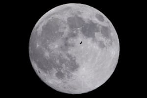 A bird flies past the supermoon in Shanghai, China.