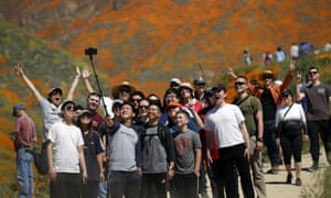 A crowd poses for a selfie among the wild poppies blooming in Walker Canyon in Lake Elsinore.