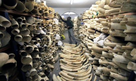 Wildlife summit votes down plan to allow sale of huge ivory stockpile