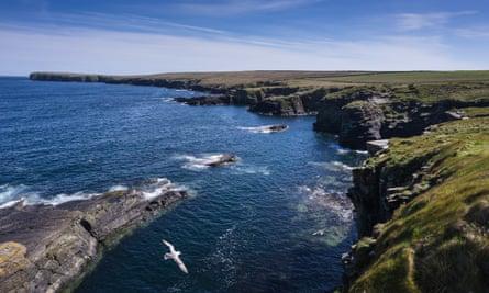 The rugged cliffs of Odinn Bay, Stronsay, Orkney, Scotland.