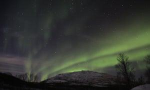 Polar Park aurora, Norway