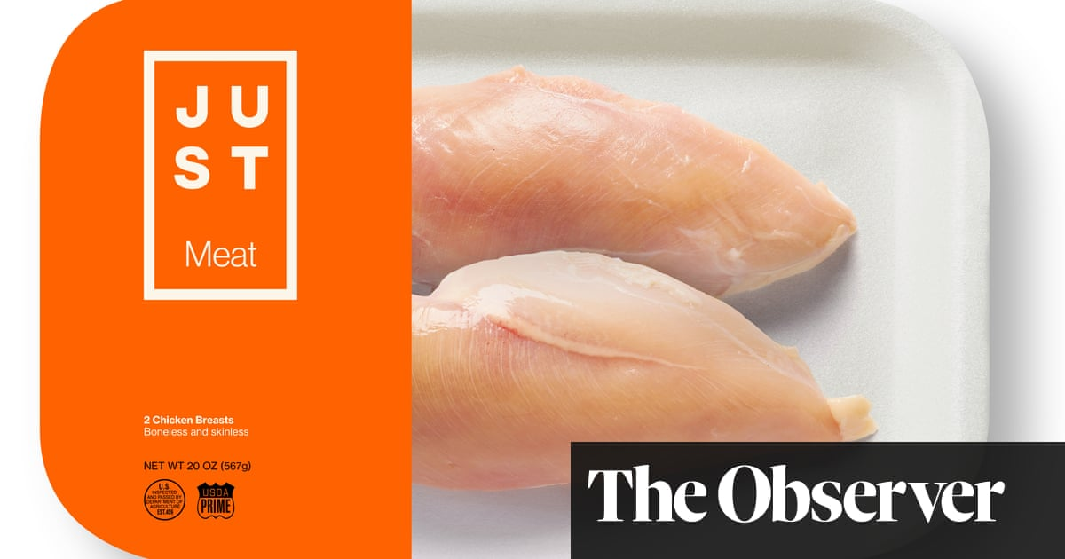 Out of the lab and into your frying pan: the advance of cultured meat