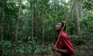 A man from the Batek tribe goes hunting in the rainforest