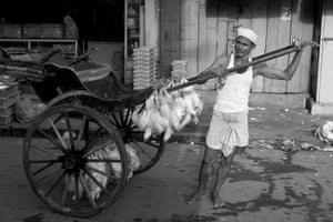 A man transports chickens in the dusty streets of Kolkata.