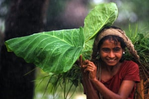Global development professionals photography competition on theme of rain