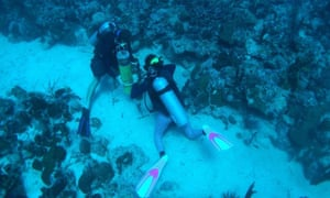 Researchers deploy a hydrophone on a coral reef shelf edge habitat called Weinberg Reef.