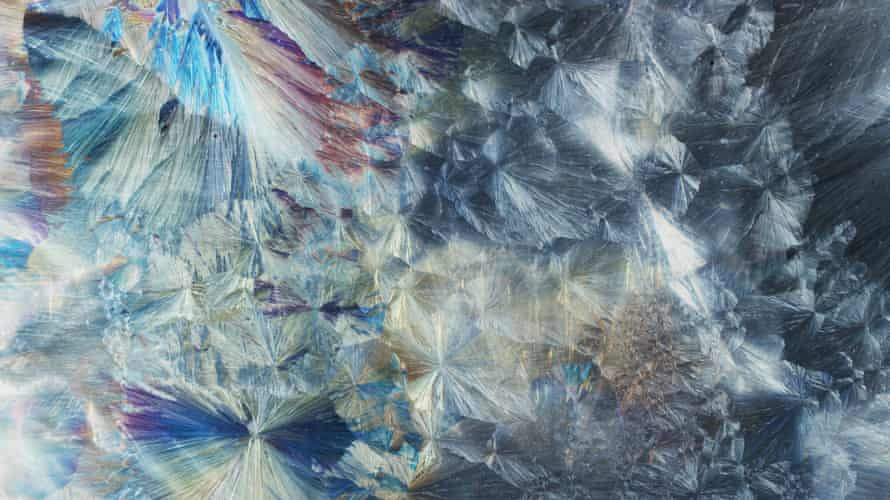 Phenomena: art meets science in spectacular and profound mini-documentary series | TV streaming