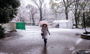 A woman walking in heavy snow in Tokyo, Japan.