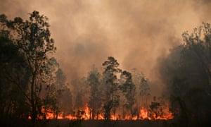 Fires burning NSW bushland