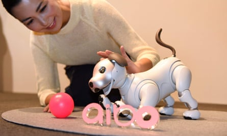 The new Aibo in action.