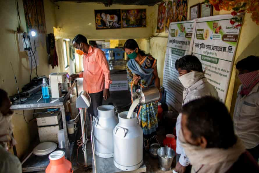 Women's group member at Lakshmi Dairy in Karjagaon, Mahadevi Chand Jedhao, checking milk for quality and fat content
