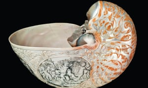 A nautilus shell, carved by Dutch artist Johannes Belkien in the late 1600s, collected by Hans Sloane.