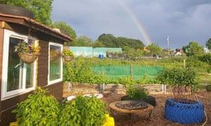 rainbow at allotment