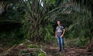Ramón Bedoya in the palm oil plantation