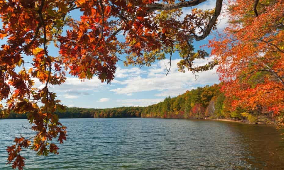 Walden Pond in Concord, Massachusetts, is the setting of Henry David Thoreau's famous work Walden.