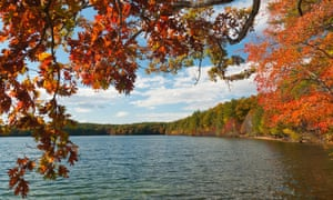Transcendental reflections … Walden Pond in Concord, where Thoreau lived and wrote. Photograph: Alamy