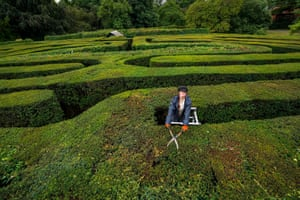 Hampton Court Palace, England: Gardener Gemma Hearn undertakes a final trim of the palace's maze in Surrey, before it reopens to visitors for the first time since March 2020