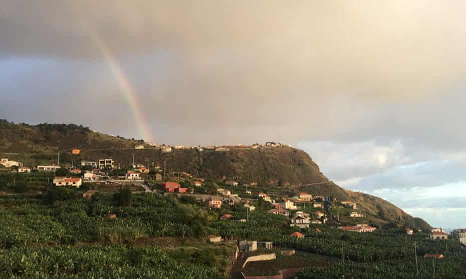Banana plantations and lush hills from the author's apartment in Arco da Calheta.