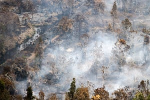 Forest fires have destroyed vast areas of land in Sumatra and Borneo, spreading a thick, noxious haze around the region
