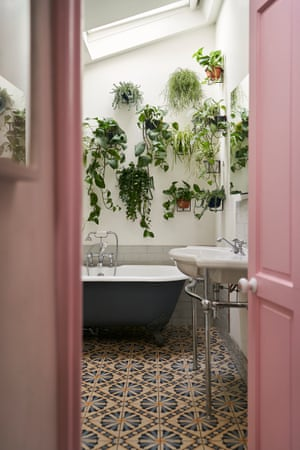 Green peace: a wall of hanging plants in the bathroom.