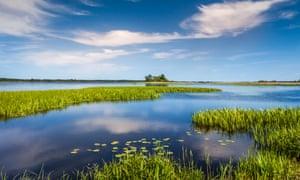 Wetlands at the wildlife reserve at Oset, Örebro.
