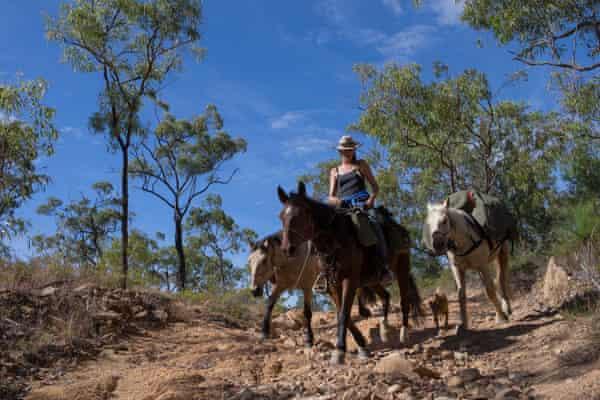 Tough terrain on horse's feet near Mutchilba, Queensland.