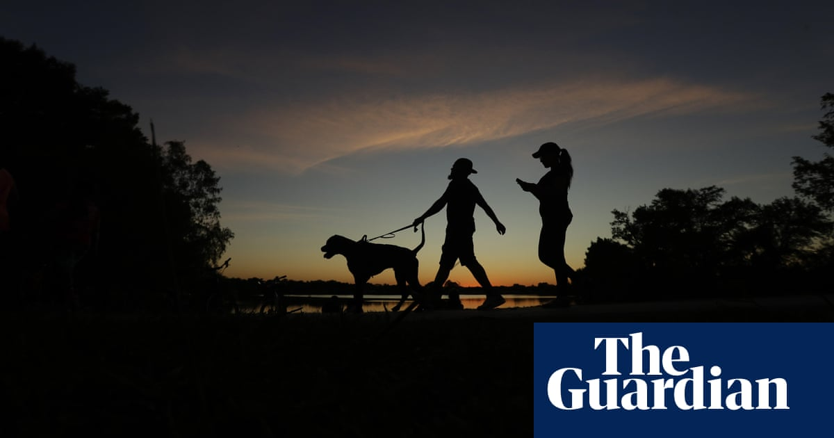 Texas governor vetoes bill protecting dogs from abuse