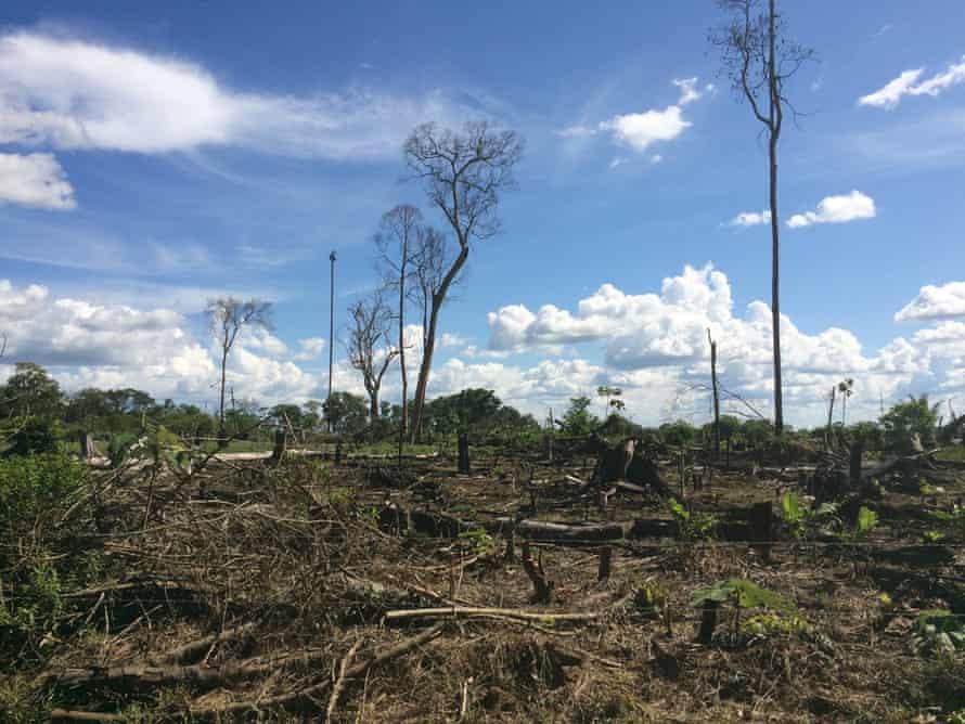 IMG 2028 Deforestation in Colombia : Recent deforestation outside El Retorno in Guaviare, Colombia
