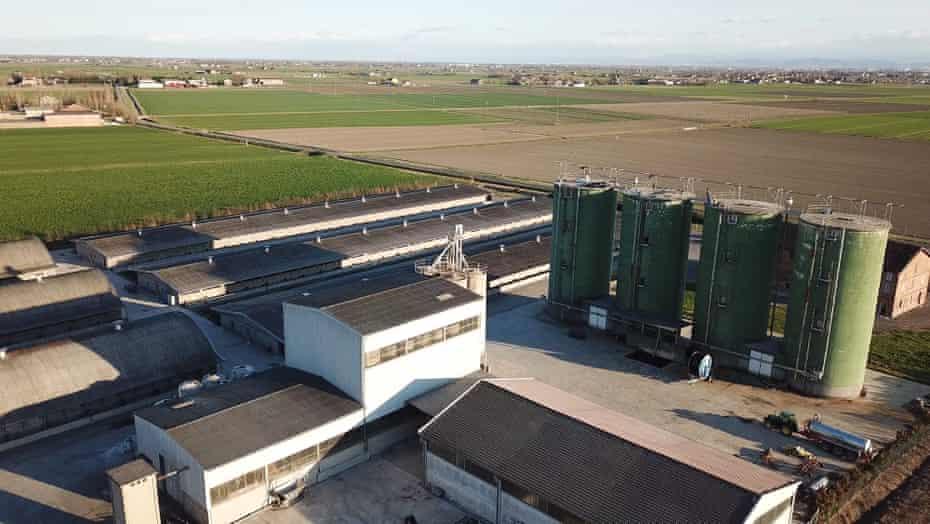 Azienda Agricola Fontanelle SNC di Ferrari e C, a pig factory farm in the small village of Cadelbosco, in Italy's Emilia-Romagna region