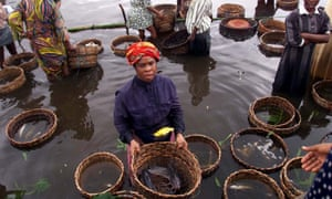 A woman stands in water as she sells fish at a market in the town of Epe, 62 miles east of Lagos.