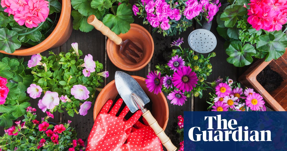 Go wild! 15 easy May gardening tasks to ensure a beautiful, flowery summer