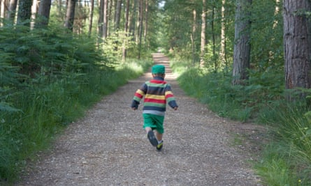 Little boy in striped jumper walking down woodland path
