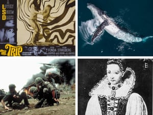 Themes from the story (clockwise from top left): a poster for the film The Trip; a humpback whale; Countess Elizabeth Bathory; and the cast of Apocalypse Now.
