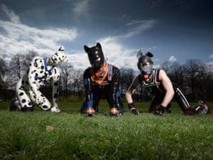 Spot, Hexyc and Tibo … Secret Life of the Human Pups.