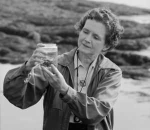 The pioneering American conservationist Rachel Carson.