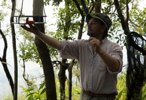 Professor Julian Bayliss gets ready to close a butterfly trap baited with fermented bananas on the cliff edge of Mount Lico. The first confirmed new species from the expedition is a butterfly. The scientist had been using satellite imagery to look for an undisturbed rainforest, something never before found in Africa.