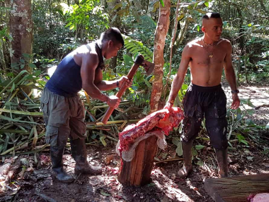 Farc guerrillas butcher meat at Camp Diamante.