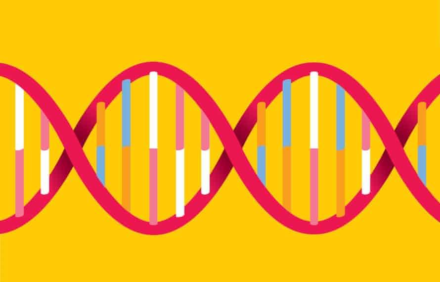 Selfish Gene genetic DNA illustration