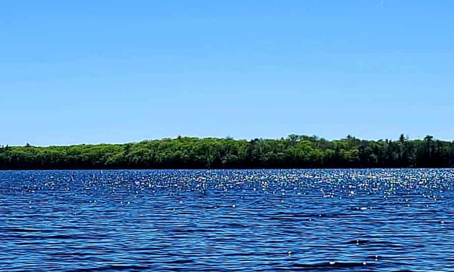 Pine Island Maine