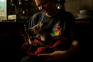 Kyle Moser feeds a kangaroo joey rescued from the same bushfire that destroyed his home