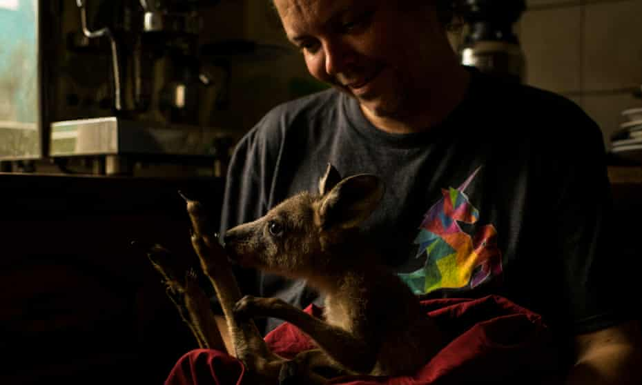 Kyle Moser feeds a Eastern Grey kangaroo joey rescued from the bushfire that destroyed his home