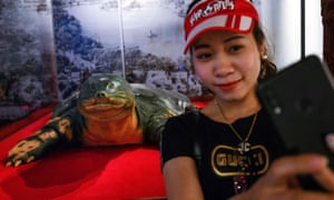 A woman takes a selfie with the embalmed giant turtle displayed at Ngoc Son temple in Hanoi.