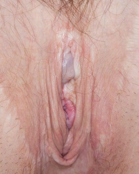 Close-up of a vulva