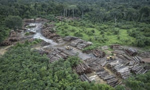 An aerial shot of an illegally deforested area of the Amazon basin