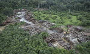 An illegally deforested area in Brazil's Amazon basin.