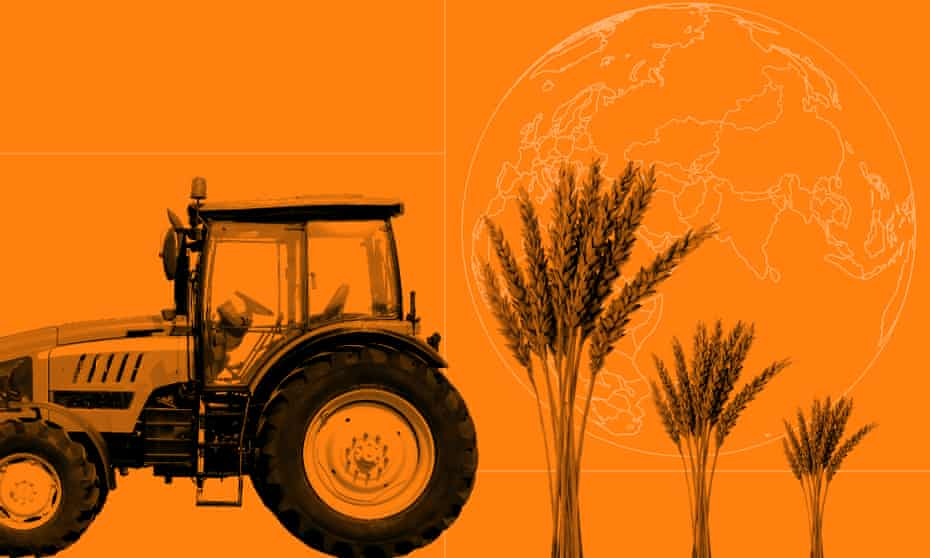 Can we ditch intensive farming - and still feed the world? | Farming | The  Guardian