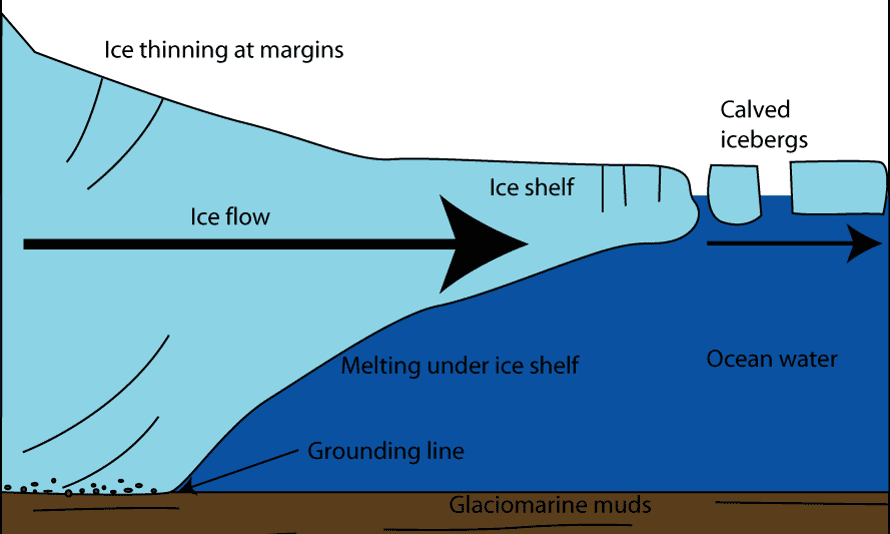 Ice bergs are calved off the edges of ice shelves.